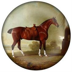 PW8603-Chestnut Hunter Horse Paperweight #Derby #DerbyDay #KentuckyDerby