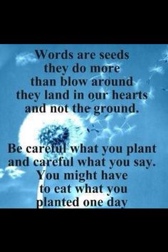 Reap What You Sow Quotes Awesome The Divinity Of Chaos 3  Quotes  Pinterest  Wisdom Design Inspiration