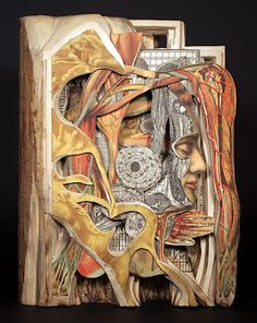 Turning Text Into Art. Intricately Altered Books by Brian Dettmer.