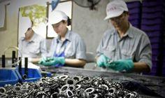 Làm sao để doanh nghiệp Việt sản xuất được con ốc vít? - http://www.daikynguyenvn.com/kinh-doanh/lam-sao-de-doanh-nghiep-viet-san-xuat-duoc-con-oc-vit.html