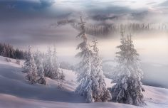 Snow, snow, snow...[On Explore] | Flickr - Photo Sharing!