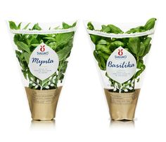 関連画像 making on organic farming Flower Packaging, Cool Packaging, Food Packaging Design, Brand Packaging, Indoor Farming, Organic Farming, Vegetable Packaging, Organic Packaging, Vegetable Shop