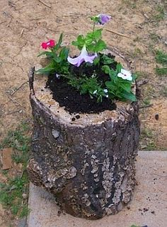 Copying nature's fine example, a hollowed out rotten log is filled with rich potting mix to create a log planter. Next time you lop a tree in your garden or find an unused log, consider repurposing it into a micro garden. Diy Garden, Garden Planters, Garden Projects, Garden Art, Garden Landscaping, Tree Stump Planter, Log Planter, Tree Stumps, Planter Ideas