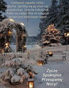 Christmas Tree, Holiday Decor, Outdoor, Good Night, Teal Christmas Tree, Outdoors, Xmas Trees, Outdoor Games, Christmas Trees