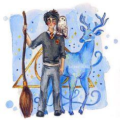 harry potter by susanne draws