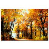 Found it at Wayfair - Golden Day by Lois Bryan Photographic Print on Wrapped Canvas