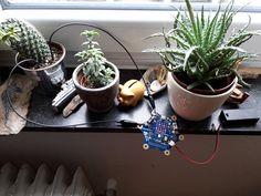 Pflanzen Feuchtigkeitssensor mit dem Calliope Mini. Calliope Mini, Planter Pots, Education, Language, Plants, Onderwijs, Learning
