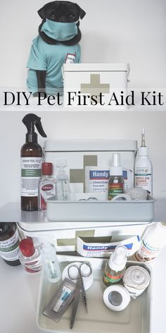 Learn how to create your very own DIY Pet First Aid Kit with this simple and easy tutorial. Be prepared for accidents in the home with a Pet First Aid Kit. Pet Insurance Reviews, Cheap Pet Insurance, Insurance Website, Puppy Care, Dog Care, Diary Diy, Diy First Aid Kit, Diy Pet, Dog Health Care