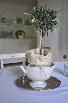 paper and twine conceal the ugly plastic pot and then set into a tureen on a charger.  Love
