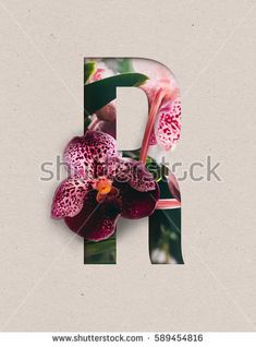 Unique Letter R alphabet made of real blooming flowers and leaves with paper cut. Illustration of floral alphabet collection for design project, poster, card, invitation, brochure and scrapbook