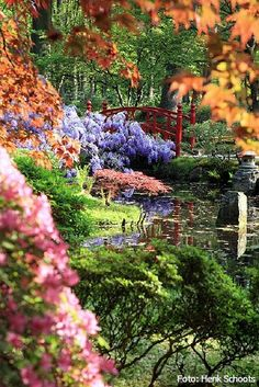 Japanese Gardens, The Hague, Netherlands