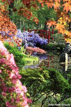 Japanse Tuin in Den Haag