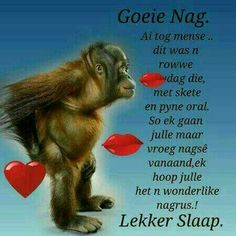 Good Night Wishes, Good Night Quotes, Evening Greetings, Goeie Nag, Goeie More, Afrikaans, Special Quotes, Sleep Tight, Good Morning