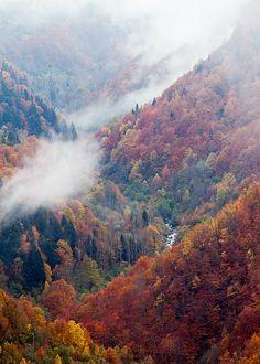 Colours - Vall d'Aran- Spain-