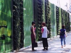 Green Hoarding - nice!
