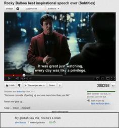 youtube comments goldfish
