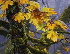 Maple Splendour