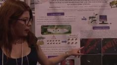 SBPC 2015 - Pesquisa testa novo método de análise do efeito de agrotóxic...