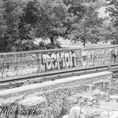 #Demon #graffiti #train #streetphotography