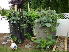 """I learned about these """"plant towers"""" from Ben Friton of CanYaLove (link is external). Cylinders made from wire fencing are supported by a central wood post and lined with weed barrier. Small holes or slits are made to plant seeds and transplants."""