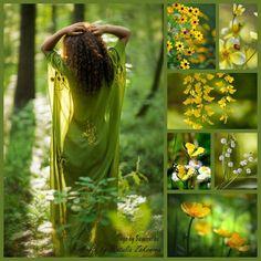 ❧ Collages de photos ❧