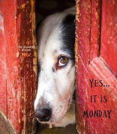 Happy Monday! ♥                                                                                                                                                                                 More