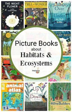 If you're studying ecosystems and habitats, these picture books can help! But, first let's clarify the difference between ecosystem and habitat. Preschool Books, Science Books, Teaching Science, Science Activities, Teaching Habitats, Food Chain Activities, Sequencing Activities, Language Activities, Creative Teaching