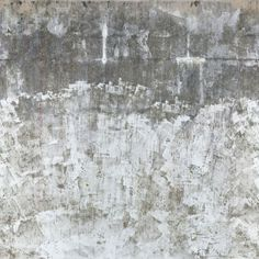 plaster Plaster Texture, Black N White, Wall Ideas, Venetian, Great Rooms, Paint Colors, Northern Lights, Stencils, Buildings