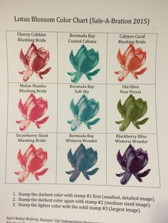 Lotus Bloom stamp set Color Chart