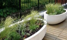 Urbis Design creates curvy contemporary garden planters, indoor containers and furniture with pure forms in an inspired range of colours and finishes. Patio Planters, Concrete Planters, Container Plants, Container Gardening, Plant Containers, Jardiniere Design, Large Plant Pots, Stipa, Pot Jardin