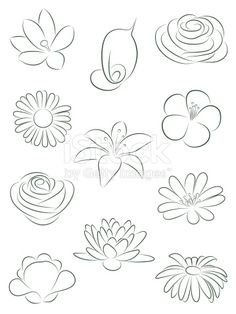 Set of flowers. Vector illustration.