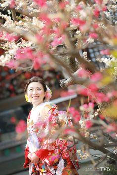 Plum blossom, Tokyo prefecture