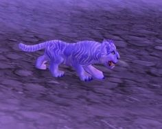Winterspring Cub - tiger cub pet coming in patch 4.1!!  So cute!WORLD OF WAR CRAFT
