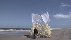 Theo Jansen is an artist from Netherlands. But not any kind of artist! He creates sculptures, or skeletons, as he calls them, that walk on wind! By using yellow plastic tubes, the artist attempts to create new forms of life. Over time he was able to make structures more resistible to wind and water. Theo Jansen's ultimate aim is to release these beautiful animals on to the beach and let them lead their own lives! Visit the artist's website: http://www.strandbeest.com/
