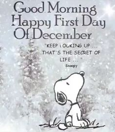 ♥ snoopy wisdom ~ keep looking up.that's the secret of life ~ quotes & wisdom Motivacional Quotes, Snoopy Quotes, Quotable Quotes, Great Quotes, Quotes To Live By, Inspirational Quotes, Advice Quotes, Jesus Quotes, Phrase Cute