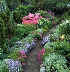 Beautiful Gardens, Stepping Stones, Lifestyle, Outdoor Decor, Plants, Summer, Stair Risers, Summer Time, Plant