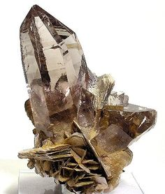 smoky quartz & desert rose for my crystal cave Minerals And Gemstones, Crystals Minerals, Rocks And Minerals, Stones And Crystals, Gem Stones, Healing Crystals, Cool Rocks, Beautiful Rocks, Crystal Magic