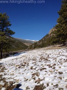 1000 Images About Bailey Colorado On Pinterest
