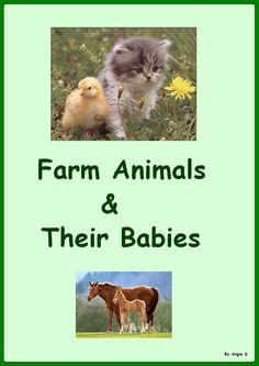$ Autism & Special Needs. Adapted Book: Farm Animals & Their Babies