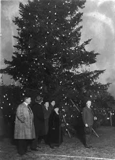 White House Christmas Trees Through The Years | History, American ...