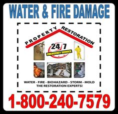 b77c737ce9a96f 10 Best Mold Removal And Mold Remediation