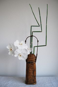 Ikebana 'Three ninja's in the water' ... white moth orchids, snake grass and bamboo ... luv the woven vase too ...