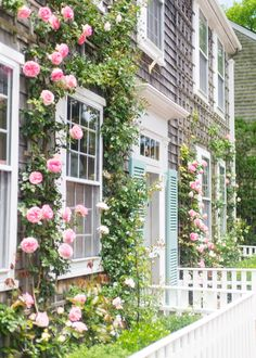 🌟Tante S!fr@ loves this📌🌟climbing roses nantucket Nantucket Cottage, Nantucket Island, Coastal Cottage, Coastal Decor, Cottage Style, Nantucket Style Homes, Nantucket Decor, Nantucket Baskets, Beautiful Gardens