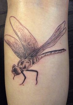 15 dragonfly tattoo