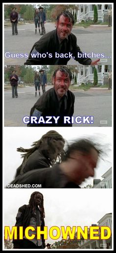 Dang that Michonne part is funny