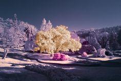 Infrared landscape by Claudio Tizzani