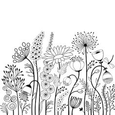 doodle art patterns / doodle art - doodle art journals - doodle art for beginners - doodle art easy - doodle art drawing - doodle art creative - doodle art patterns - doodle art for beginners easy drawings Easy Flower Drawings, Butterfly Drawing, Easy Drawings, Butterfly Flowers, Drawing Flowers, Art Flowers, Flower Sketches, Images Of Flowers, Flowers To Draw