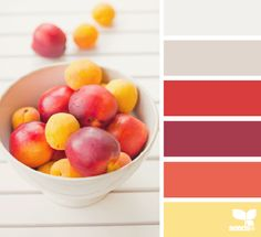Painting best feng shui kitchen colors