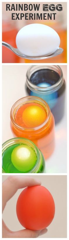 TRANSPARENT RAINBOW EGG EXPERIMENT: one of the coolest experiments for kids…