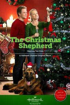 TV Worth Blogging About: Hallmark's 2014 Original Christmas Movies, The Christmas Shepard, Hallmark, Countdown to Christmas 2014